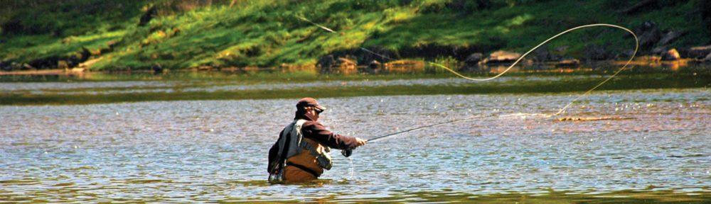 Прогрессивная рыбалка и активаторы клева
